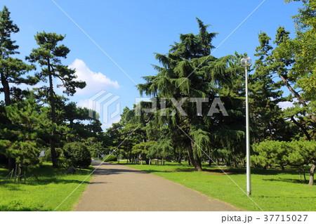 大阪 浜寺公園 37715027
