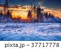 beautiful winter sunset 37717778
