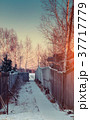 beautiful winter sunset 37717779