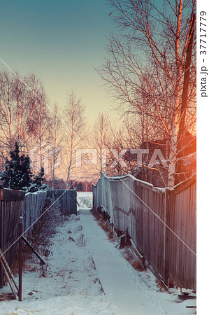 beautiful winter sunset 37717779