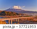 東名高速道路 富士山 富士市の写真 37721953