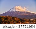 富士山 早朝 雪化粧の写真 37721954