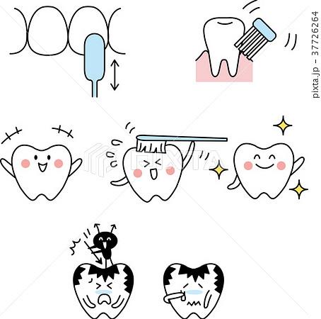 歯とブラッシングセット 37726264