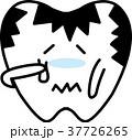 ベクター 歯 虫歯のイラスト 37726265