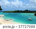石垣島 川平湾 海の写真 37727088