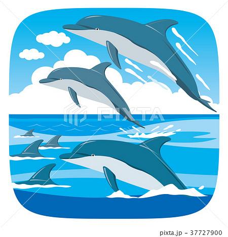 イルカの群れのイラスト素材 37727900 Pixta