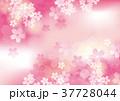 桜 花 春のイラスト 37728044