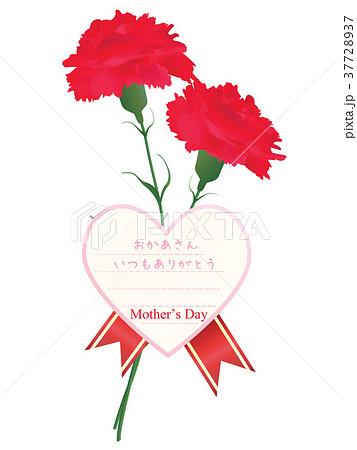 母の日 37728937