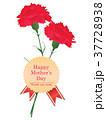 母の日 カーネーション プレゼントのイラスト 37728938