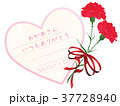 母の日 カーネーション メッセージカードのイラスト 37728940