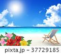 海 リゾート ビーチのイラスト 37729185