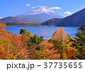 富士山 本栖湖 紅葉の写真 37735655