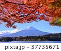 風景 富士山 河口湖の写真 37735671