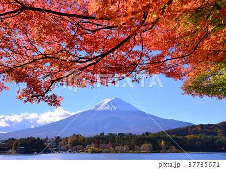 河口湖畔からの秋の風景-778005 37735671