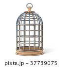 閉鎖 クローズド CLOSEDのイラスト 37739075