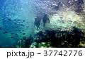 海 写真 37742776