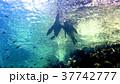 海 写真 37742777