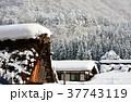 雪の白川郷合掌集落 37743119