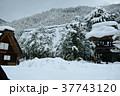 雪の白川郷合掌集落 37743120