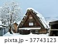 雪の白川郷合掌集落 37743123