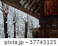 雪の白川郷合掌集落 37743125