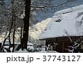 雪の白川郷合掌集落 37743127
