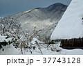 雪の白川郷合掌集落 37743128