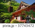 新緑の談山神社 37743472