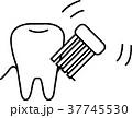 ベクター 歯ブラシ 歯磨きのイラスト 37745530