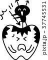 ベクター 歯 虫歯のイラスト 37745531