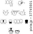 歯 セット デンタルケアのイラスト 37745601