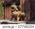 bronze lion in Nepal 37746204
