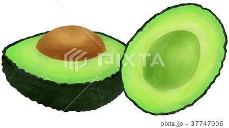 手描き 果物 アボカド 37747006