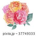 バラ 花 花束のイラスト 37749333