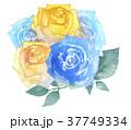 バラ 花 花束のイラスト 37749334