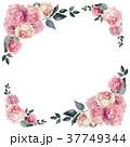 薔薇 花 水彩のイラスト 37749344