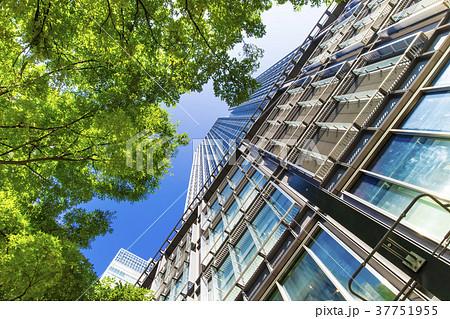 オフィス街の高層ビルと緑 37751955