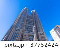 東京都庁 東京 高層ビルの写真 37752424