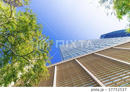 オフィス街の高層ビルと緑 37752537
