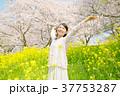 桜 女性 菜の花の写真 37753287
