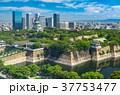 大阪城公園 37753477