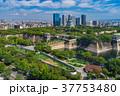 大阪城公園 37753480