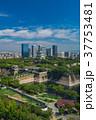 大阪城公園 37753481