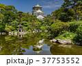 大阪城と日本庭園 37753552