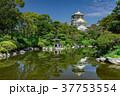 大阪城と日本庭園 37753554