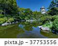 大阪城と日本庭園 37753556