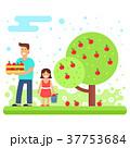りんご リンゴ 農作物のイラスト 37753684