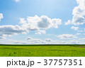【北海道】自然イメージ 37757351