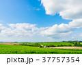 【北海道】自然イメージ 37757354