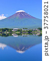 富士山 青空 河口湖の写真 37758021
